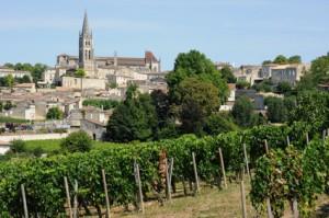 vignoble de Saint-Emilion en Aquitaine