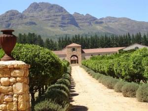 blog-du-vin.fr- vignoble Afrique du Sud