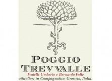 blog-du-vin.fr- vin italien