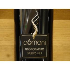 blog-du-vin.fr- vin rouge italien a6mani
