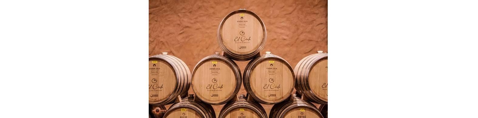 blog-du-vin.fr- vignobles EL CIELO de Valle Guadalupe
