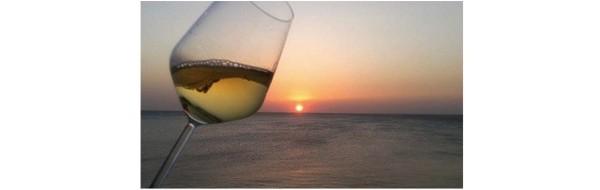 blog-du-vin.fr- vins pour l été